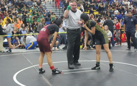 What its like to be a girl wrestler