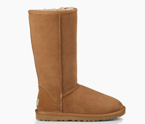 Uggs Become Controversial
