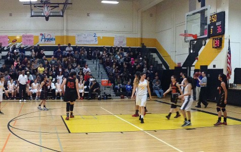 Girls Basketball Ends CIF Season With 31-50 Loss to Rosary High